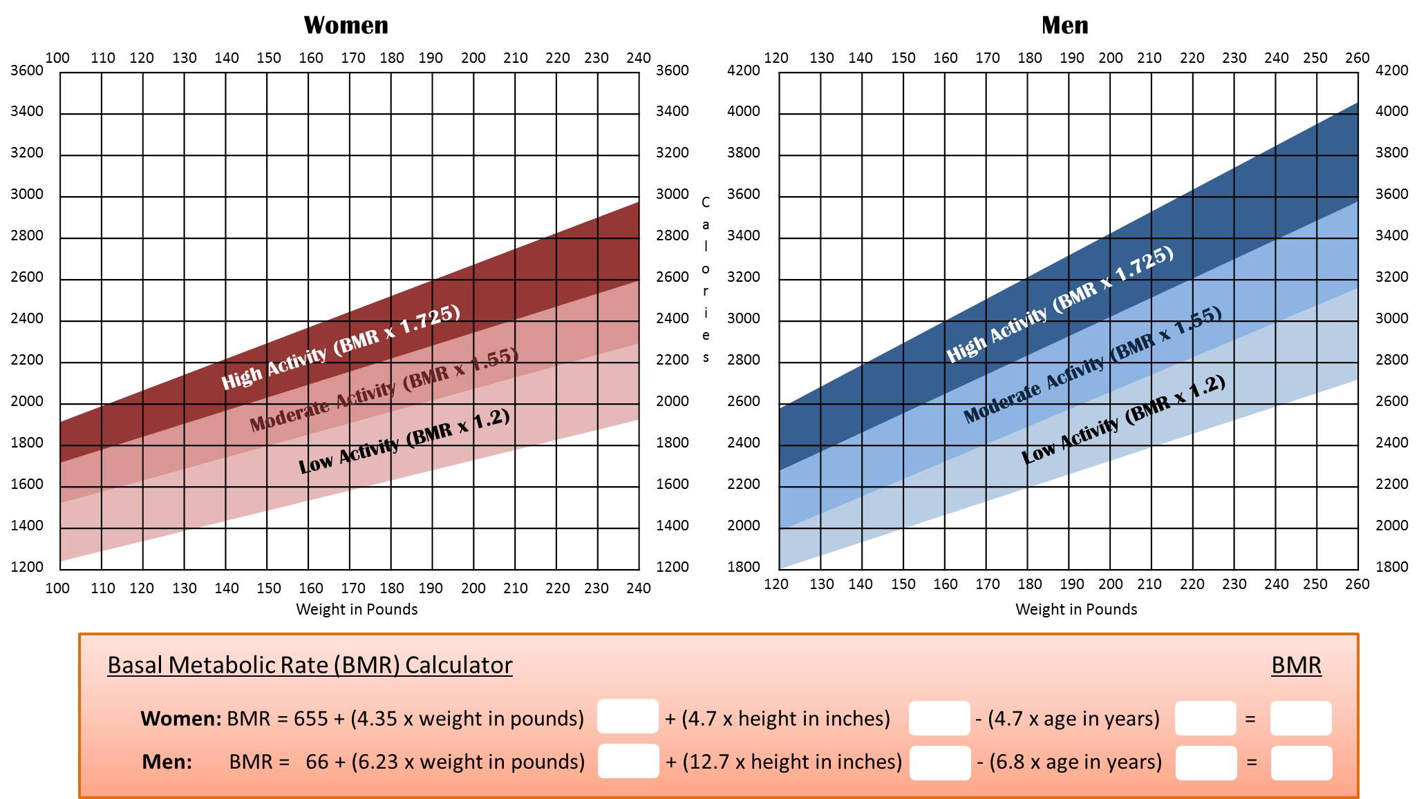 basal metabolic rate calculator