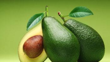 buah-alpukat